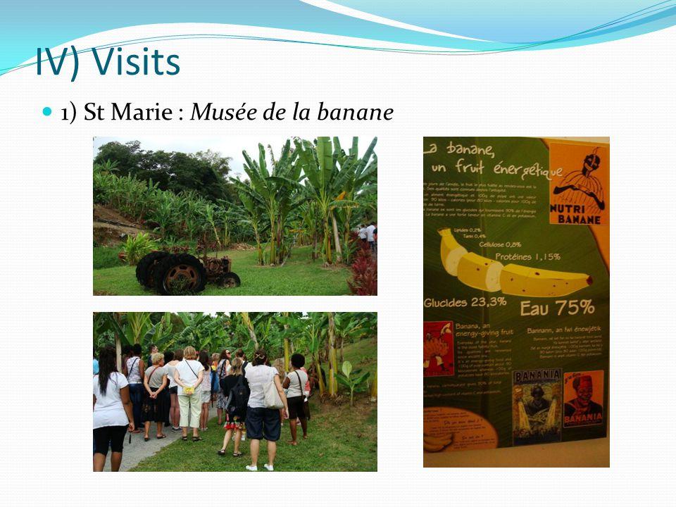 IV) Visits 1) St Marie : Musée de la banane