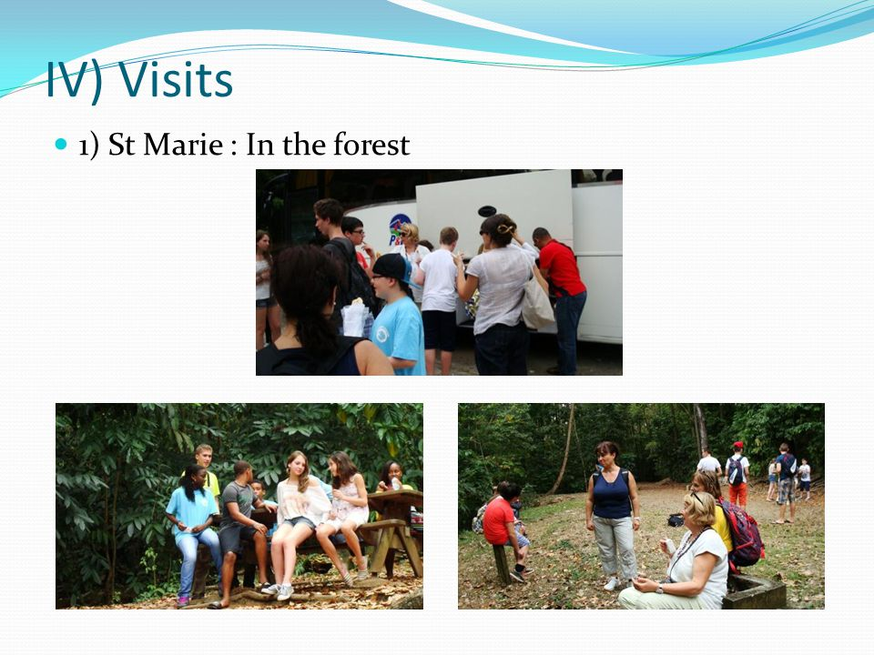 IV) Visits 1) St Marie : In the forest