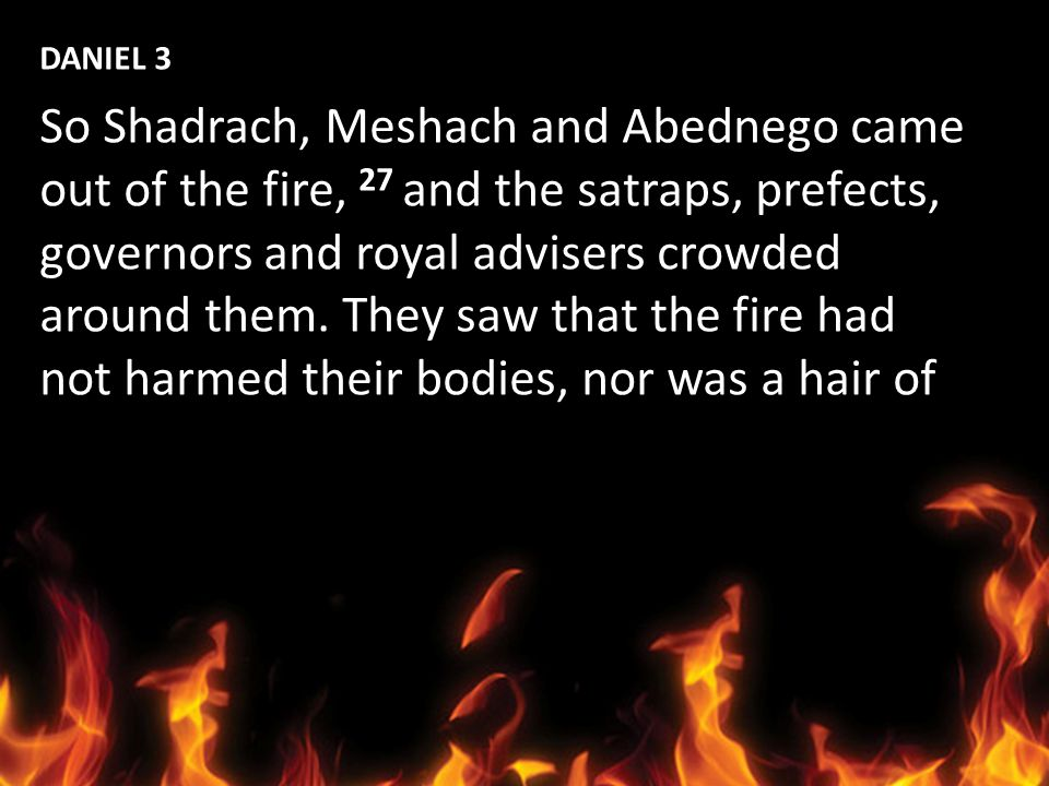 DANIEL 3 So Shadrach, Meshach and Abednego came. out of the fire, 27 and the satraps, prefects, governors and royal advisers crowded.