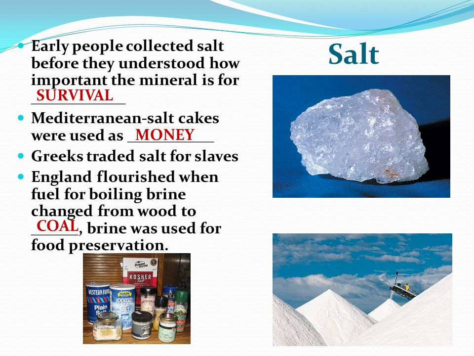 Salt Early people collected salt before they understood how important the mineral is for ____________.