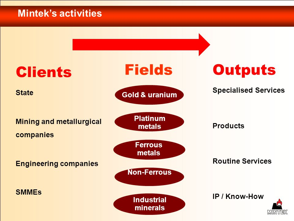 Fields Outputs Clients Mintek's activities Specialised Services State