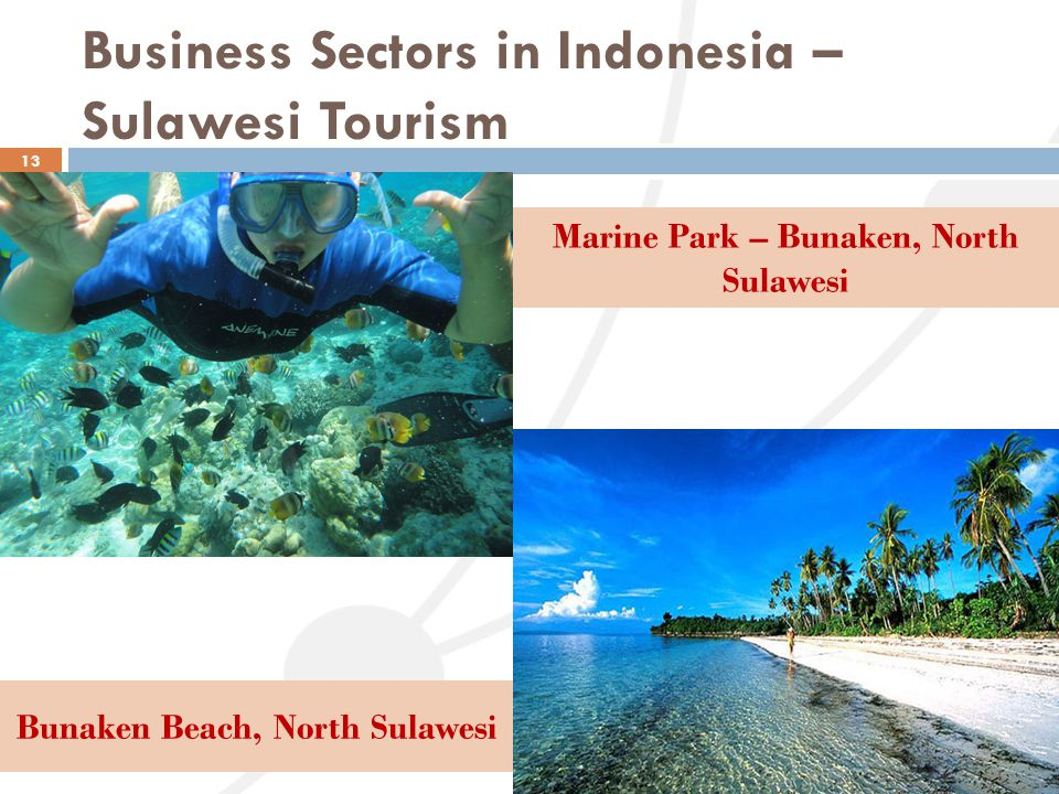 Business Sectors in Indonesia – Sulawesi Tourism
