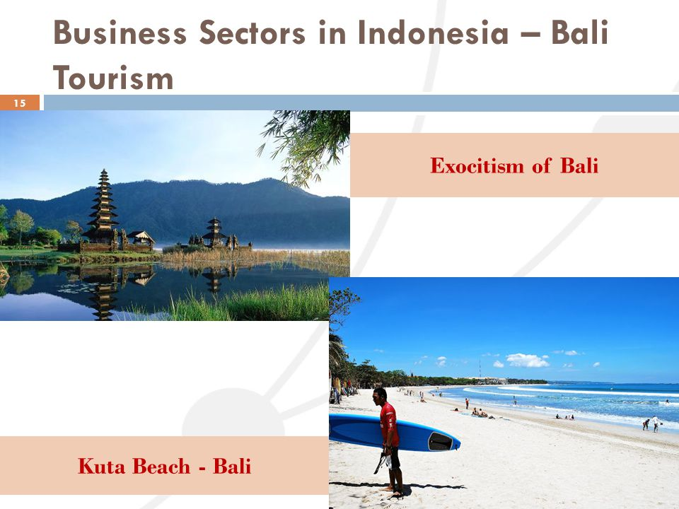 Business Sectors in Indonesia – Bali Tourism