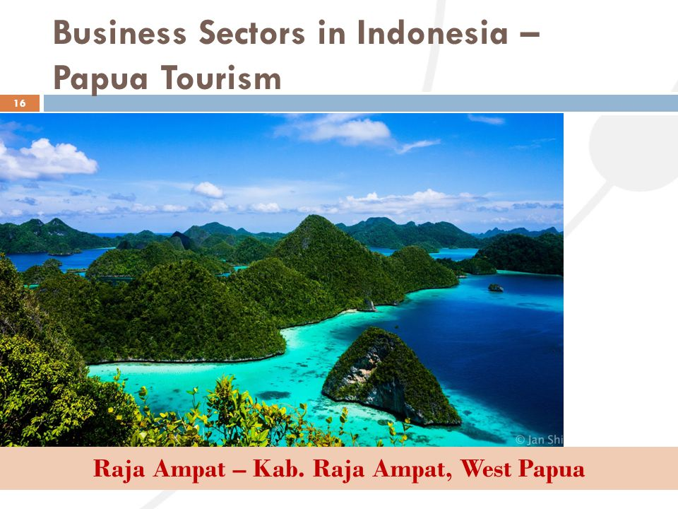 Business Sectors in Indonesia – Papua Tourism