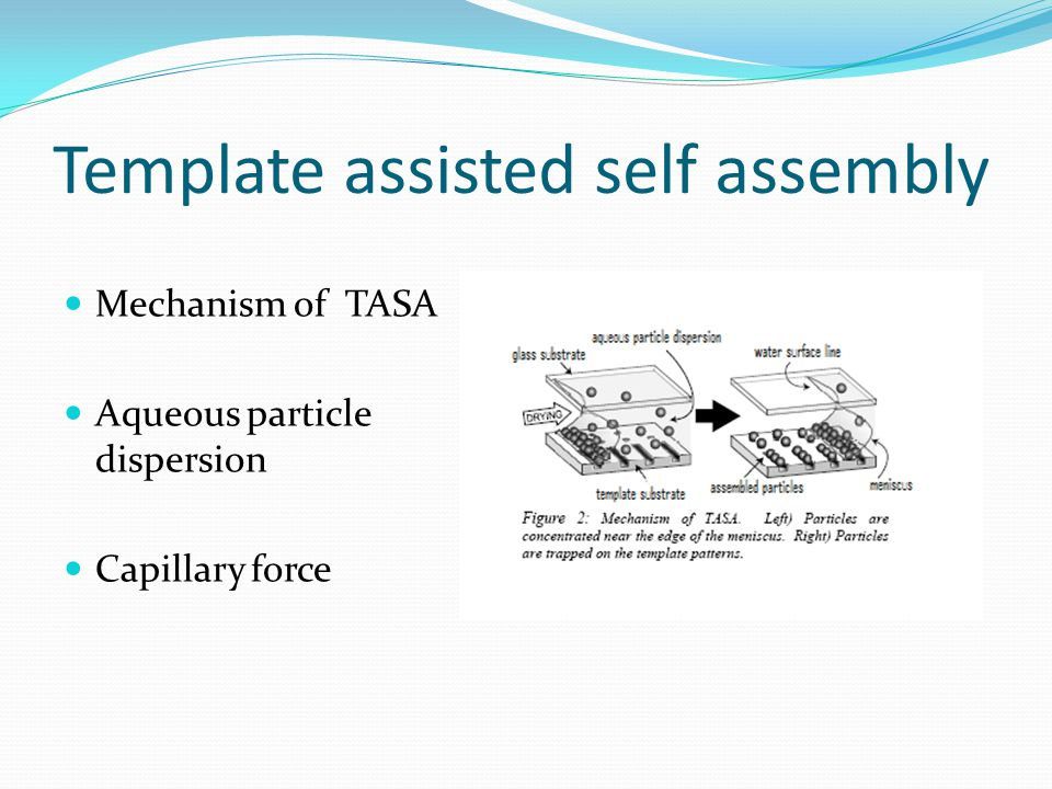 Template assisted self assembly