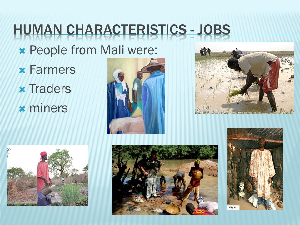 Human Characteristics - Jobs