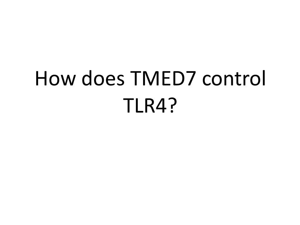 How does TMED7 control TLR4