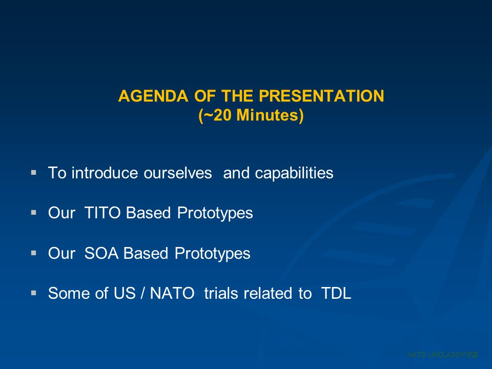 AGENDA OF THE PRESENTATION (~20 Minutes)