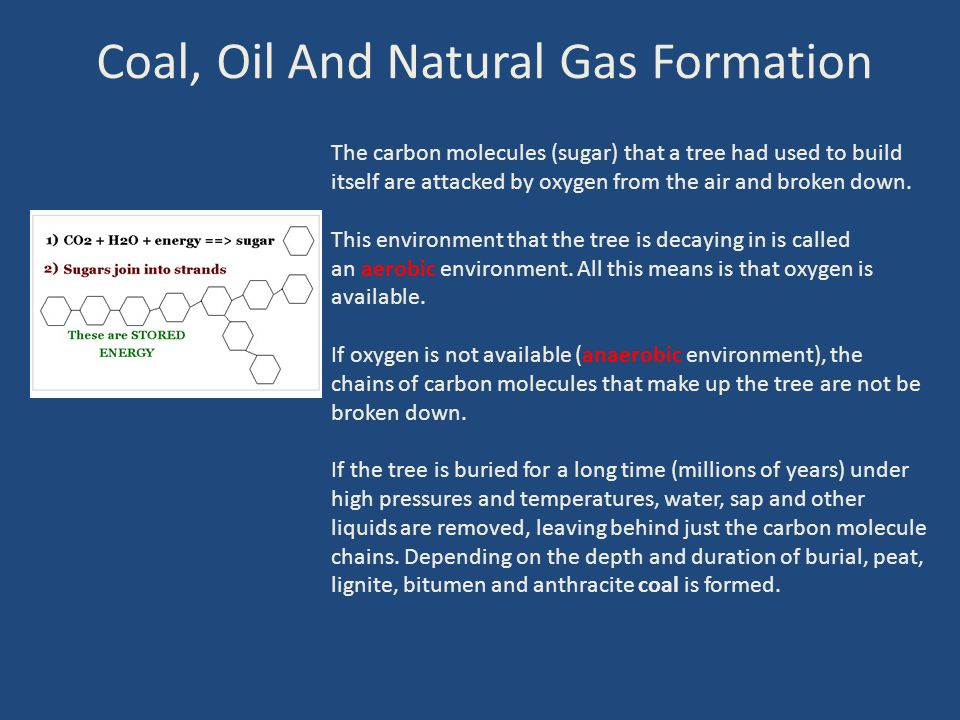 Coal, Oil And Natural Gas Formation