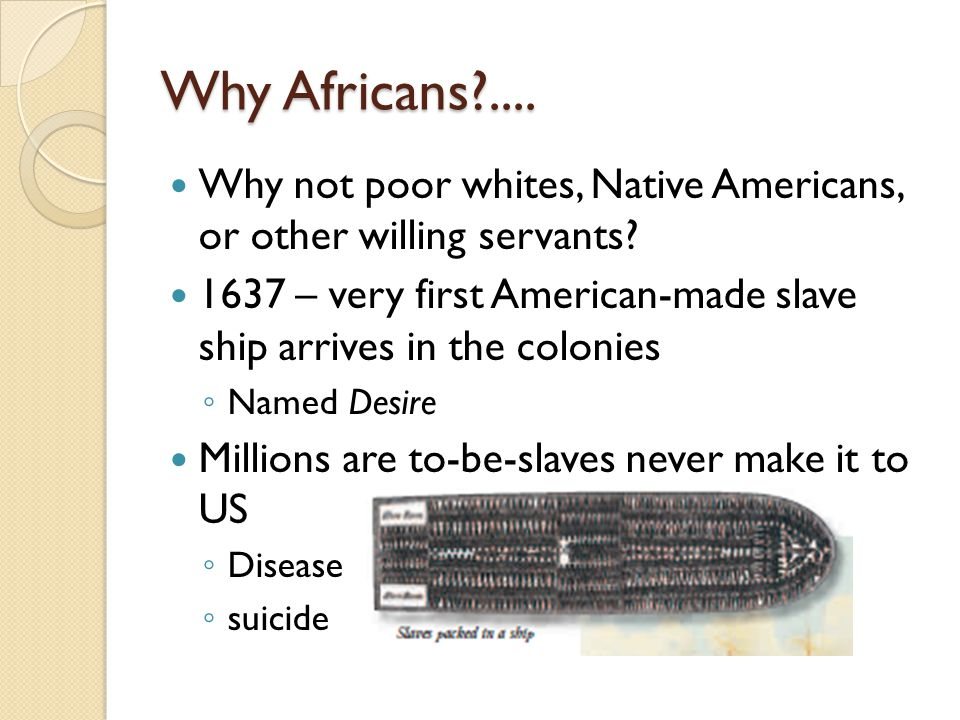 Why Africans .... Why not poor whites, Native Americans, or other willing servants