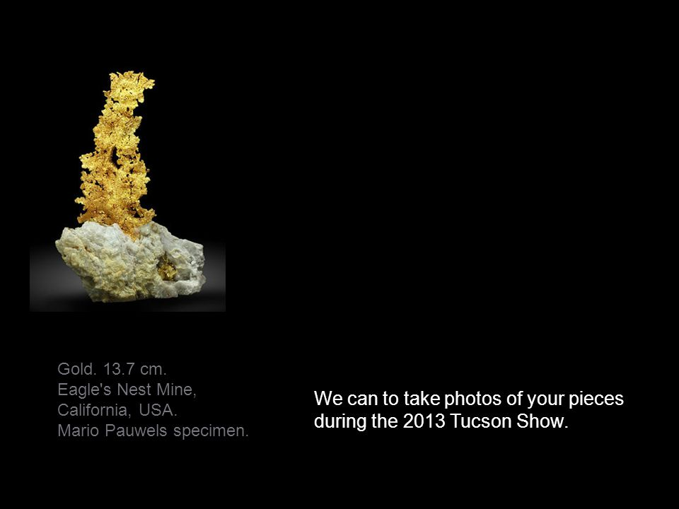 We can to take photos of your pieces during the 2013 Tucson Show.