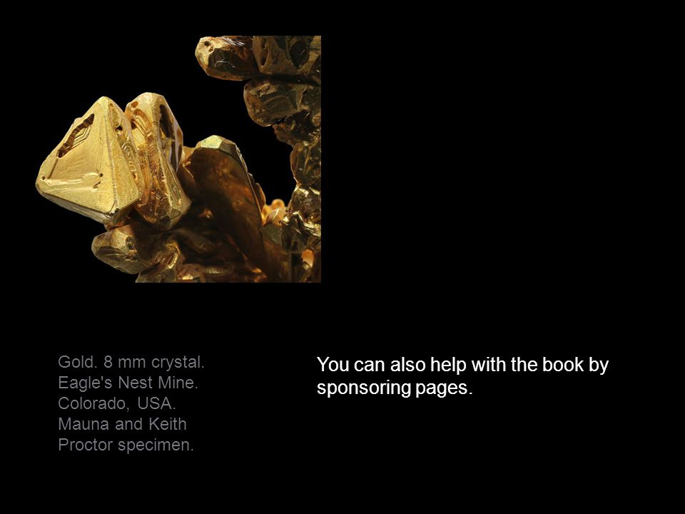 You can also help with the book by sponsoring pages.