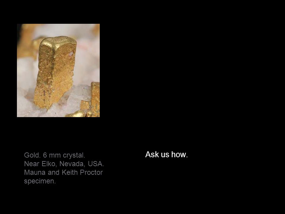 Ask us how. Gold. 6 mm crystal. Near Elko, Nevada, USA.