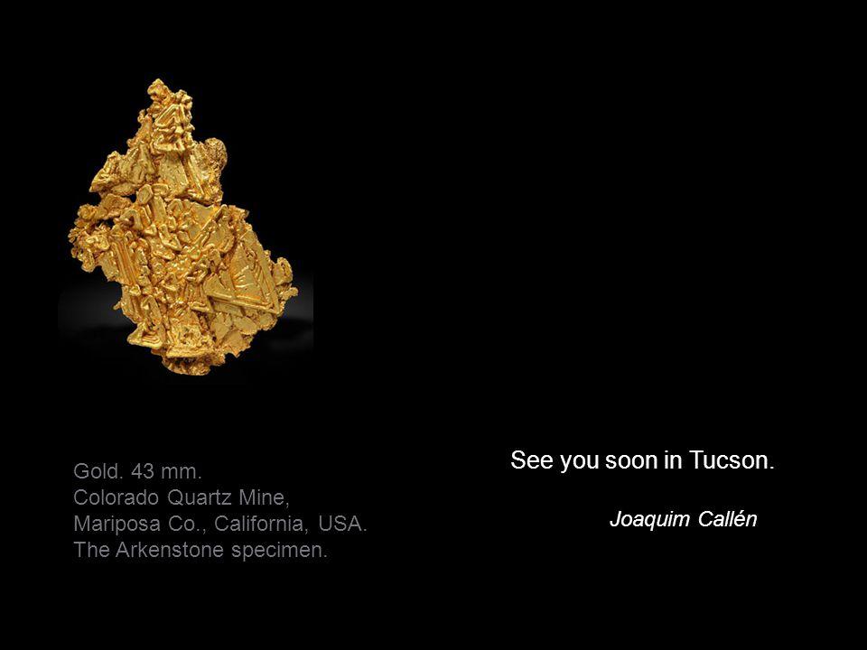 See you soon in Tucson. Joaquim Callén Gold. 43 mm.