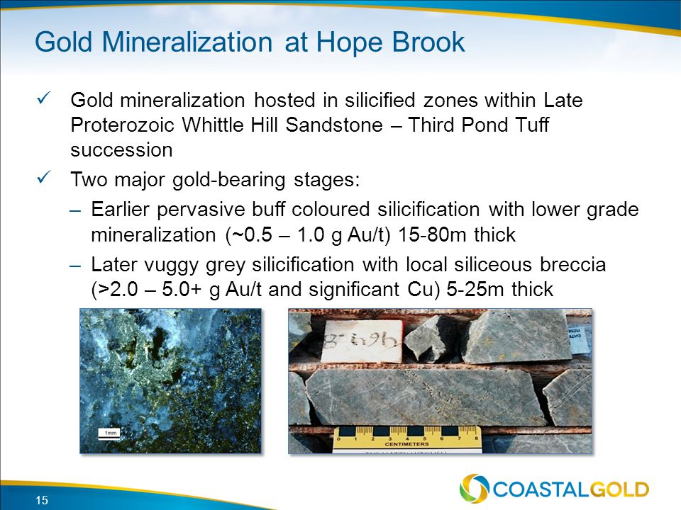 Gold Mineralization at Hope Brook