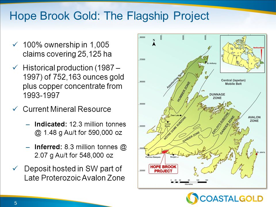 Hope Brook Gold: The Flagship Project