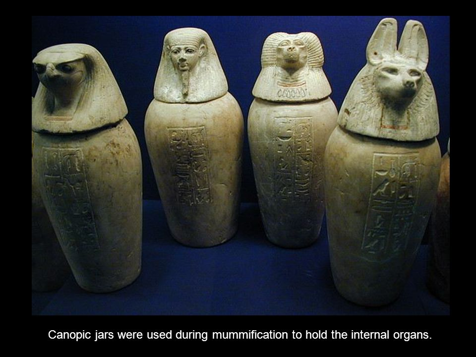 Canopic jars were used during mummification to hold the internal organs.