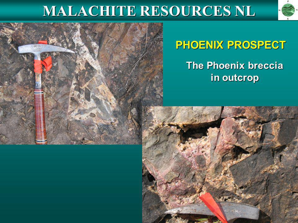 MALACHITE RESOURCES NL The Phoenix breccia in outcrop