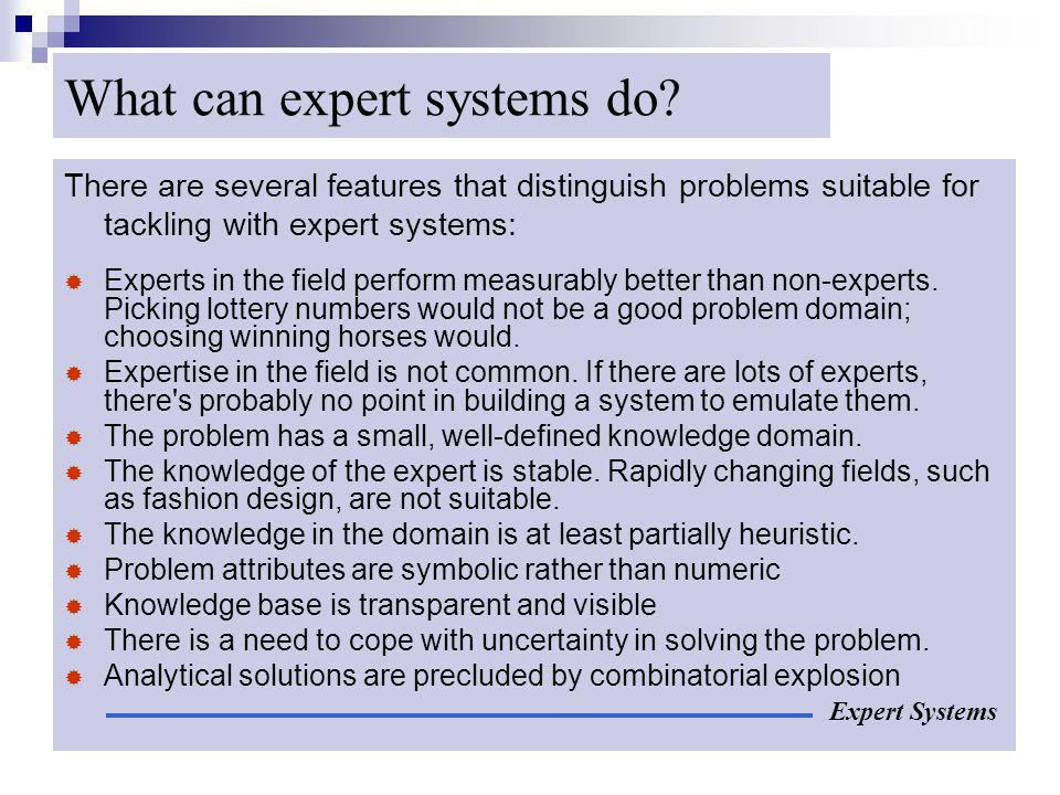 What can expert systems do
