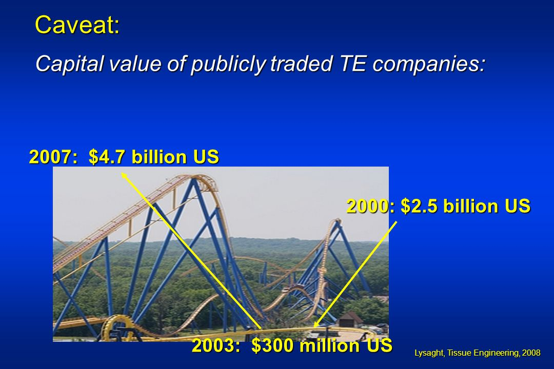 Caveat: Capital value of publicly traded TE companies: