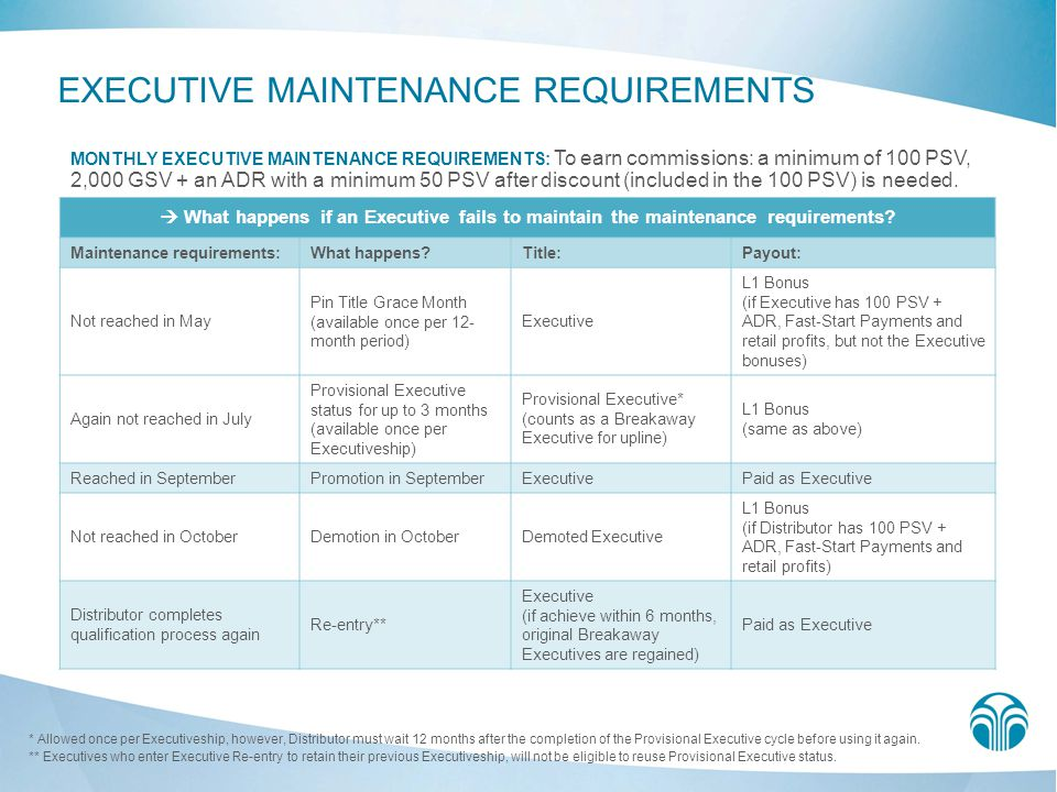 EXECUTIVE MAINTENANCE REQUIREMENTS