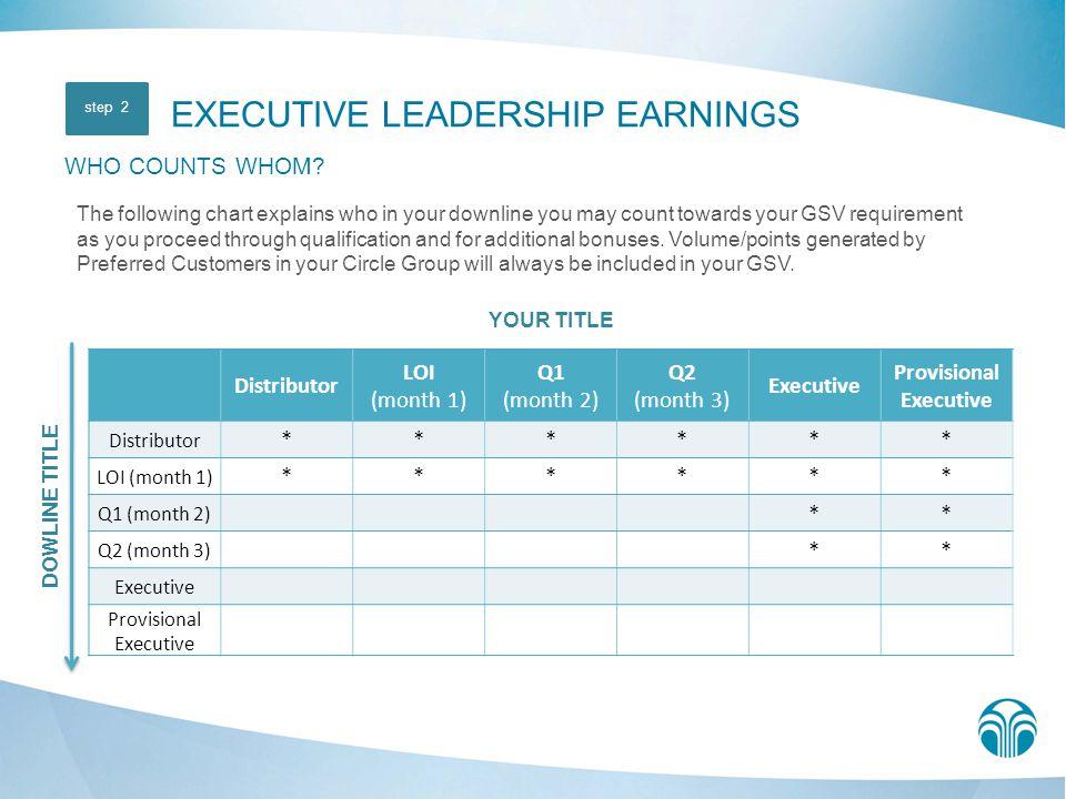 Provisional Executive
