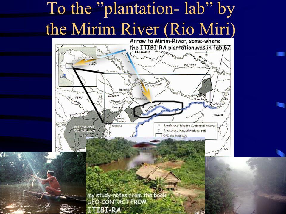 To the plantation- lab by the Mirim River (Rio Miri)