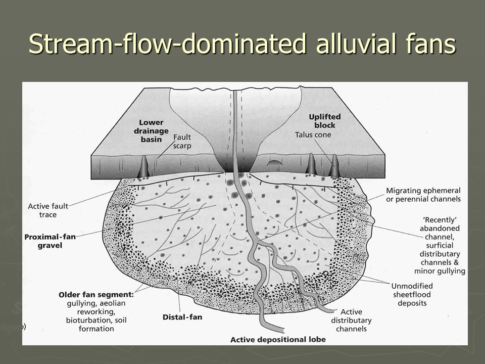 Stream-flow-dominated alluvial fans