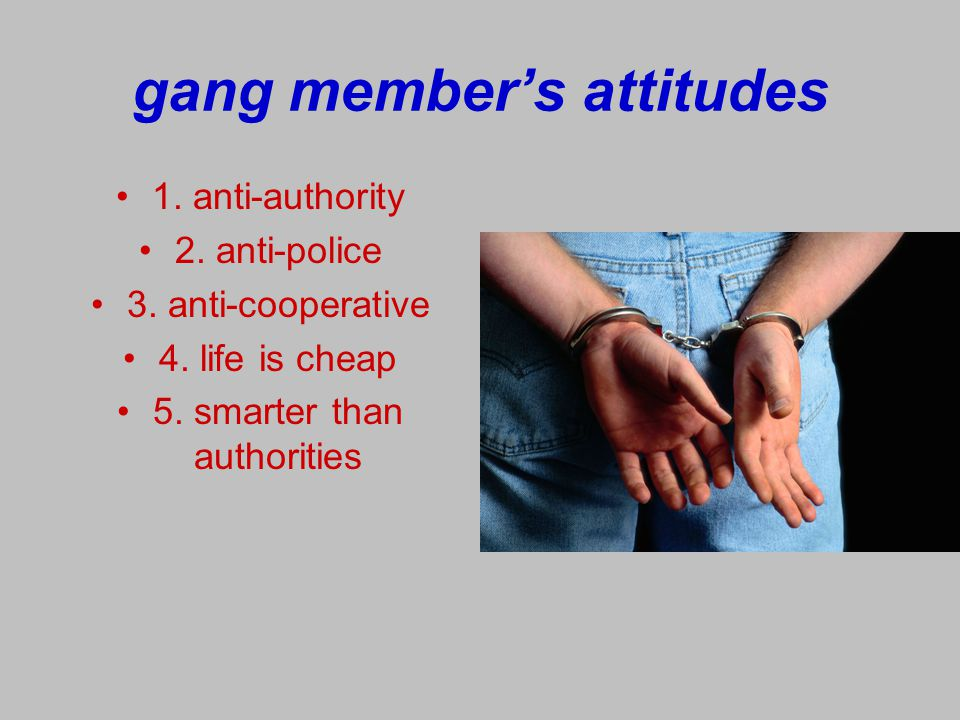 gang member's attitudes