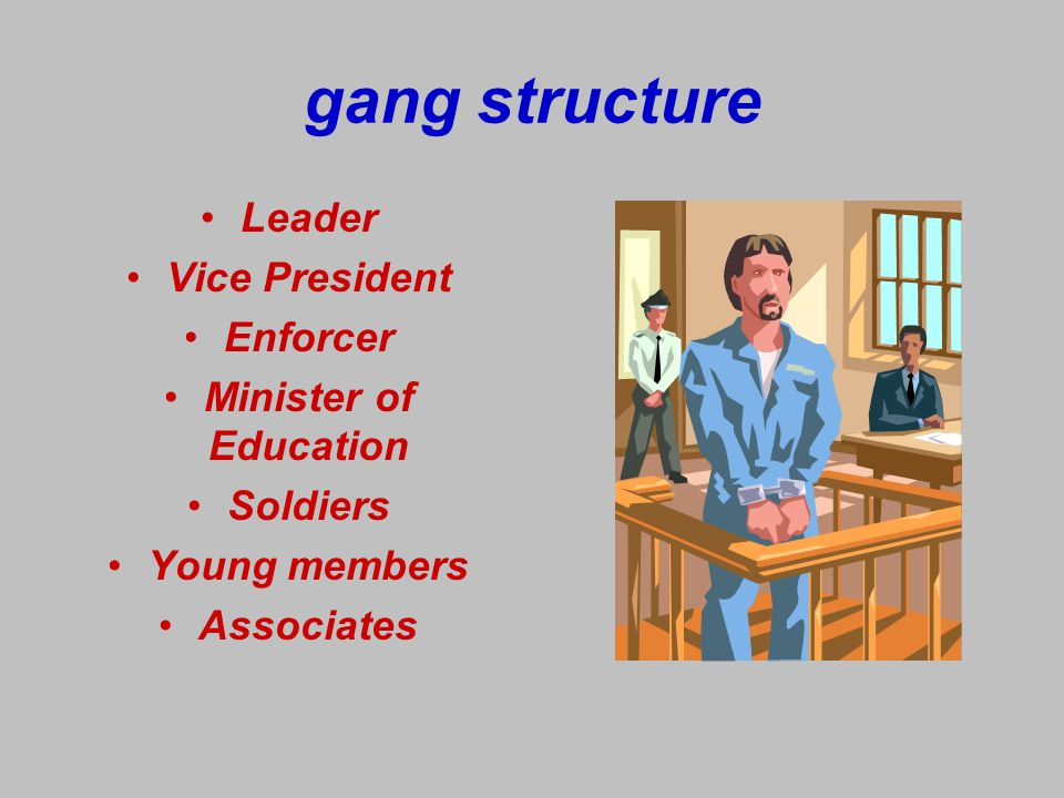 gang structure Leader Vice President Enforcer Minister of Education