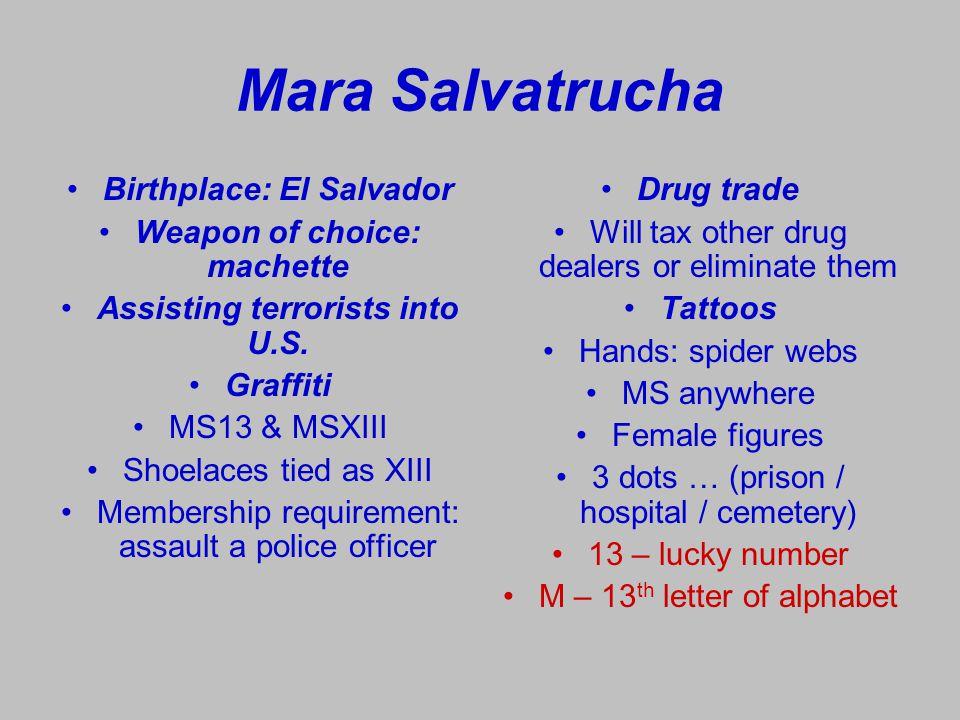 Mara Salvatrucha Birthplace: El Salvador Weapon of choice: machette