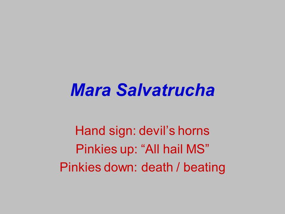 Mara Salvatrucha Hand sign: devil's horns Pinkies up: All hail MS