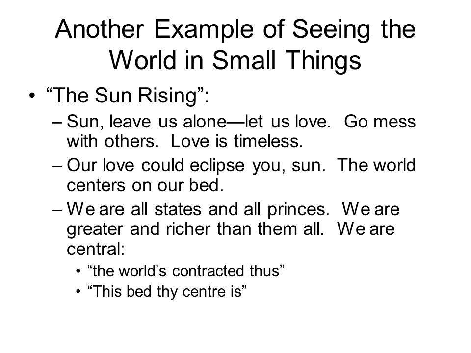Another Example of Seeing the World in Small Things