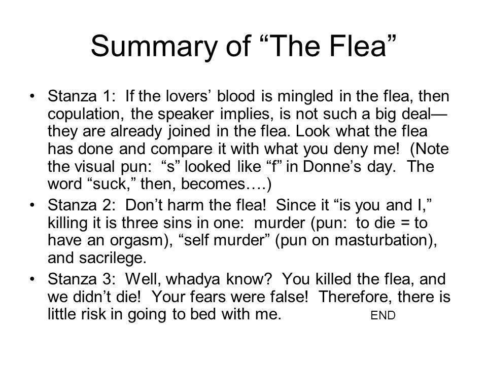 Summary of The Flea