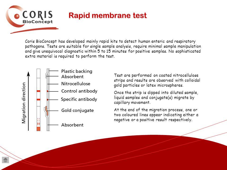 Rapid membrane test