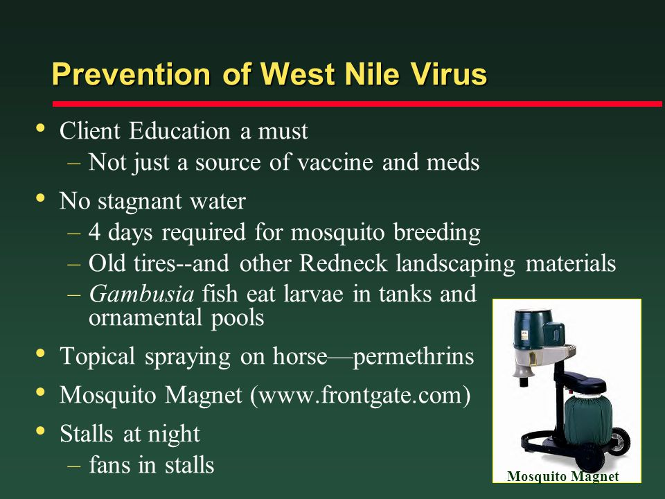 Prevention of West Nile Virus