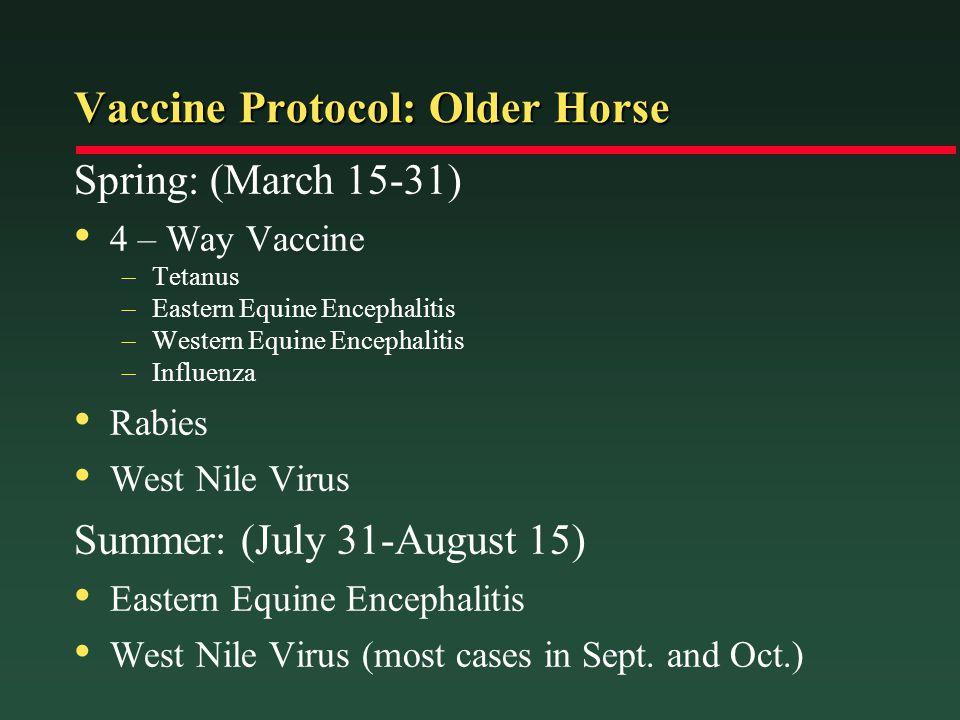 Vaccine Protocol: Older Horse