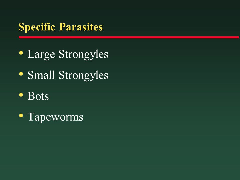 Specific Parasites Large Strongyles Small Strongyles Bots Tapeworms