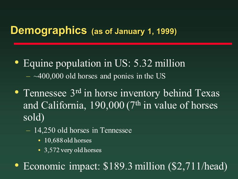 Demographics (as of January 1, 1999)