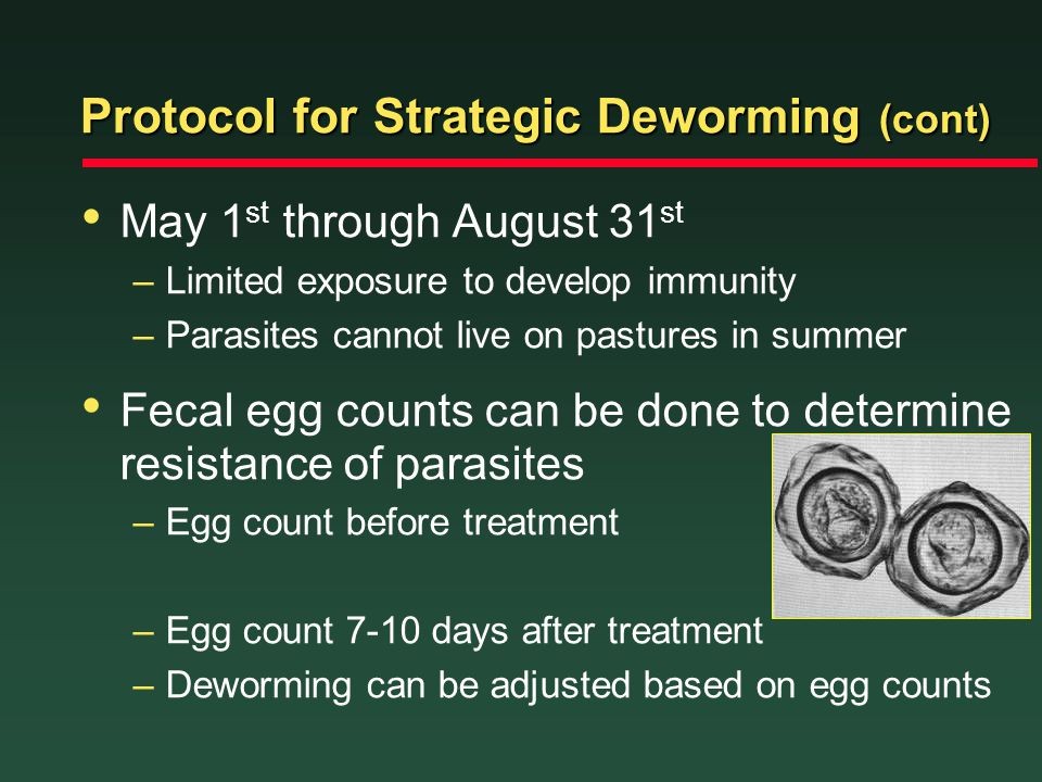 Protocol for Strategic Deworming (cont)