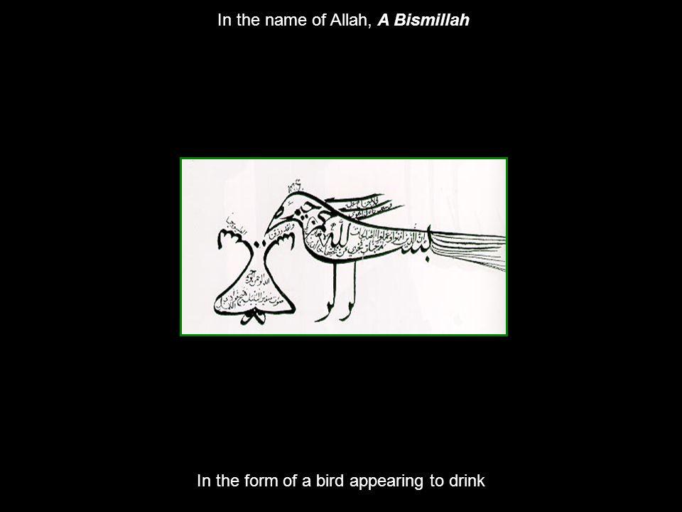 In the name of Allah, A Bismillah