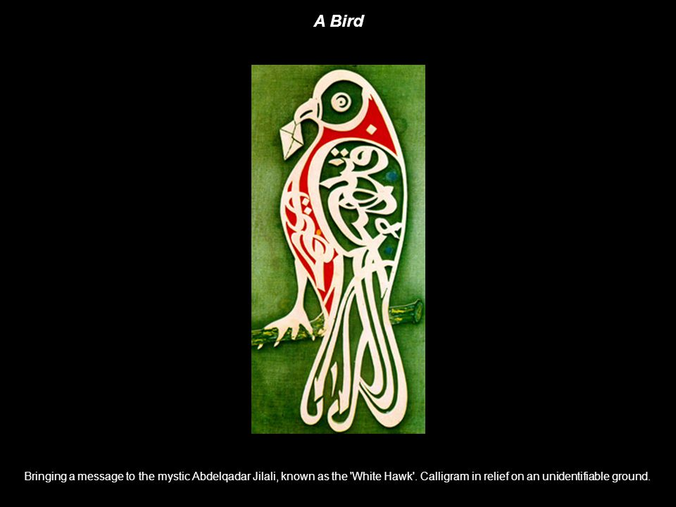 A Bird Bringing a message to the mystic Abdelqadar Jilali, known as the White Hawk .