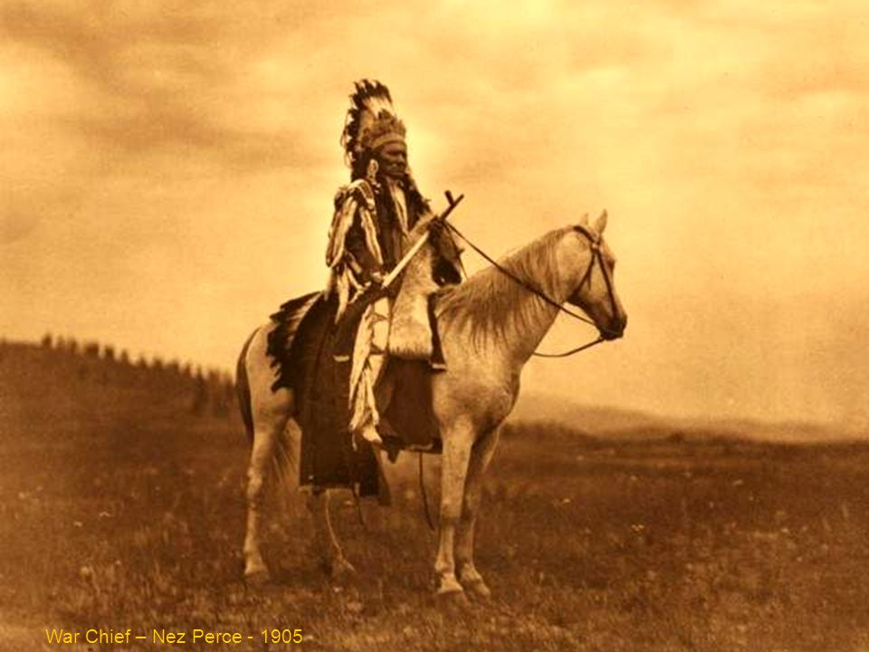 War chief - Nez Perce - 1905 War Chief – Nez Perce - 1905
