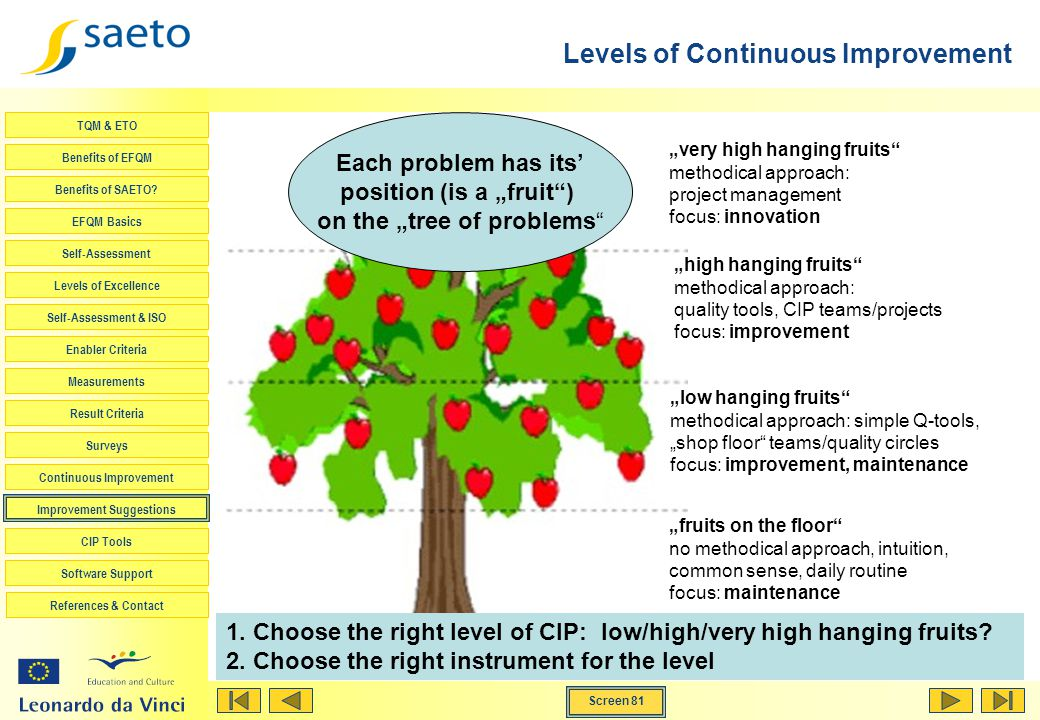 Levels of Continuous Improvement