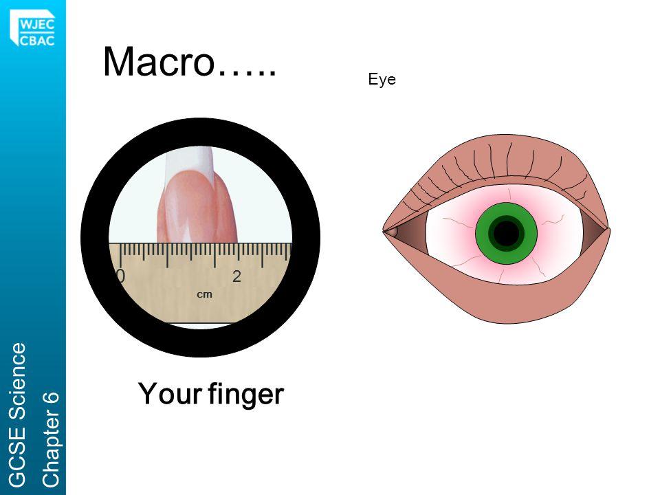 Macro….. Eye 2 cm GCSE Science Chapter 6 Your finger