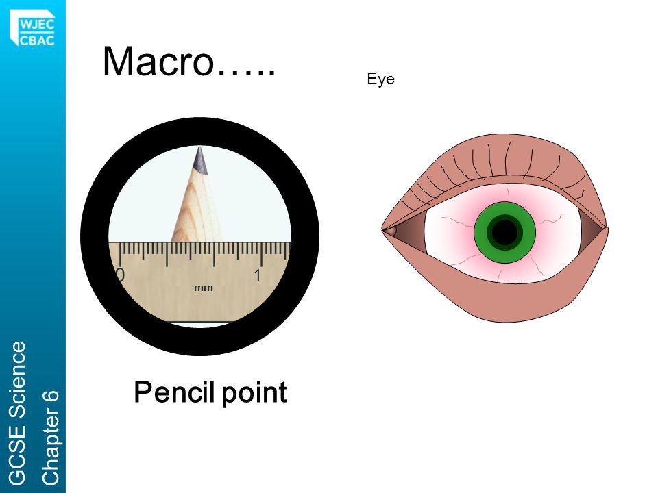 Macro….. Eye 1 mm GCSE Science Chapter 6 Pencil point