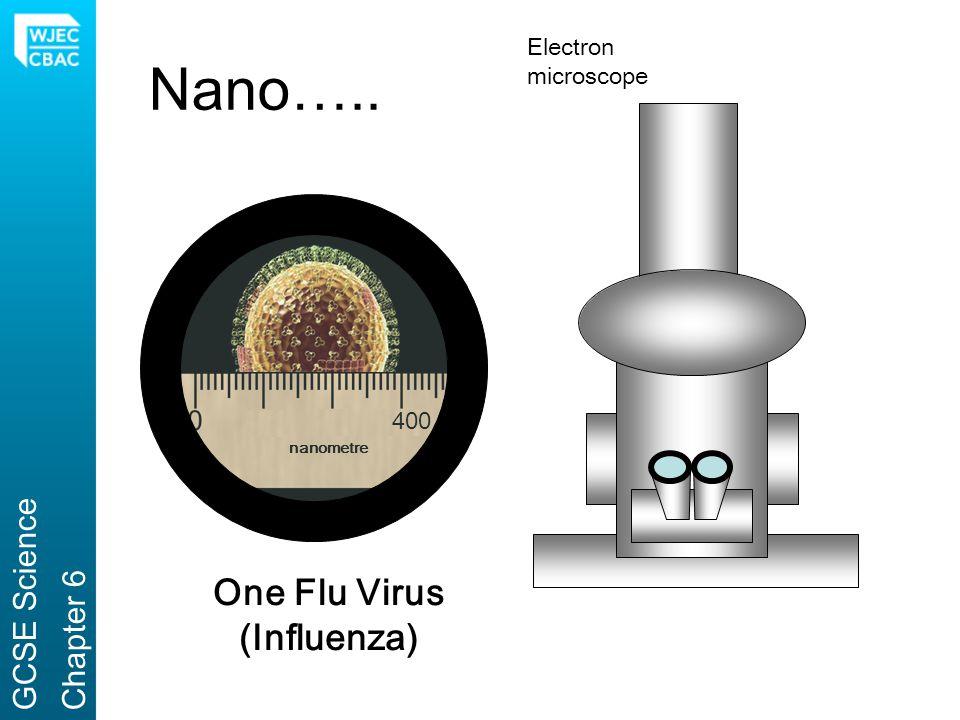 One Flu Virus (Influenza)