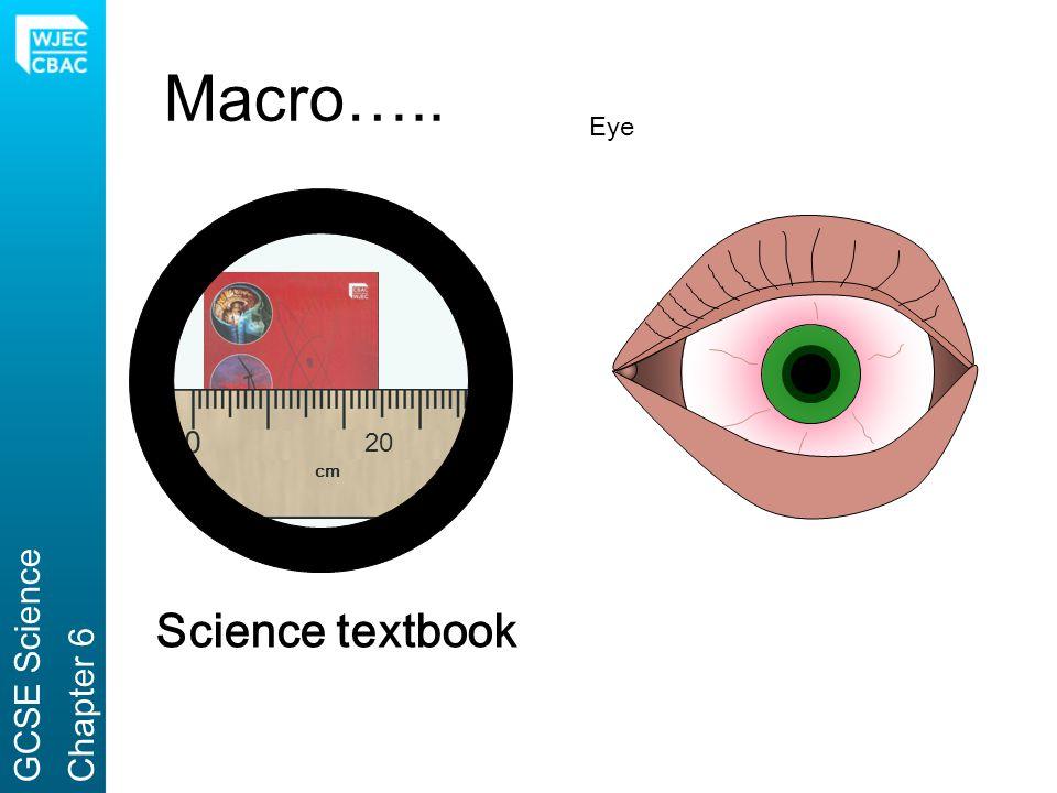 Macro….. Eye 20 cm GCSE Science Chapter 6 Science textbook
