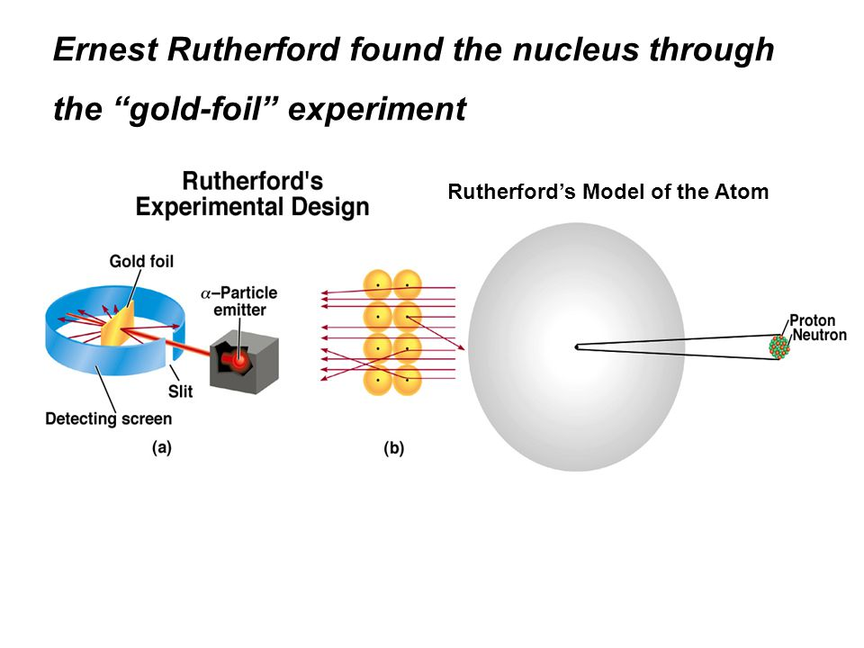 Ernest Rutherford found the nucleus through the gold-foil experiment