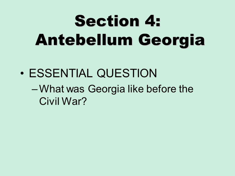Section 4: Antebellum Georgia